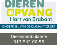DOC-T